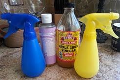 1 Tbsp soap per cup of water = :) spray happy